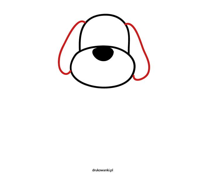 jak narysować psa krok trzeci
